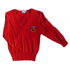 Braidwood Primary Cotton V-Neck Jumper