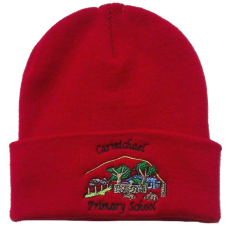 Carmichael Primary Wooly Hat