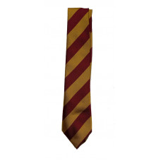 Coalburn Primary Tie