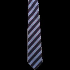 Lanark Primary Tie