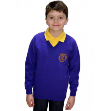 Robert Owen Primary V-Neck Sweatshirt